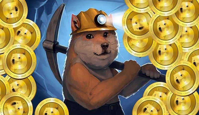 ۵ دلیل برای توجه خاص به دوژکوین DogeCoin در بازار ارزهای دیجیتال!
