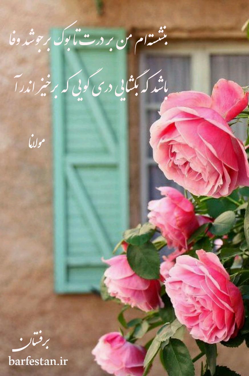 برفستان؛دمی با شاعران(مولانا)قسمت سیزدهم