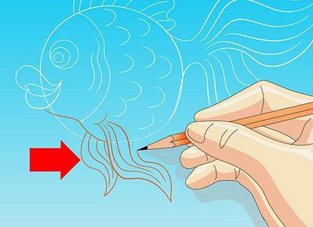 نقاشی ماهی,آموزش کشیدن نقاشی ماهی,نقاشی ماهی پولک دار