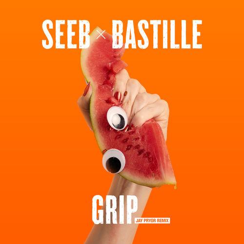 دانلود آهنگ Grip (Jay Pryor Remix) از SeeB و Bastille کیفیت 320 + متن