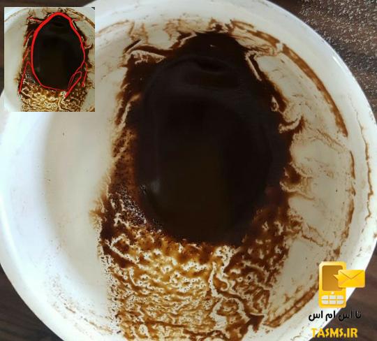 تفسیر و معنی شکل سوسک در فال قهوه