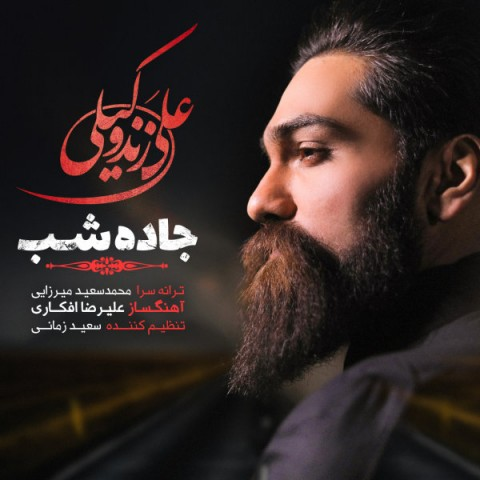 دانلود آهنگ جاده شب از علی زندوکیلی