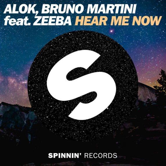 دانلود آهنگ Hear Me Now از Alok با کیفیت 320 + متن و ترجمه فارسی