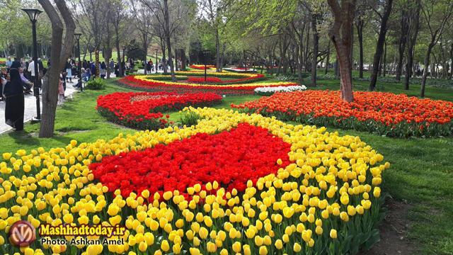 گزارش تصویری جشنواره گل های لاله در پارک ملت