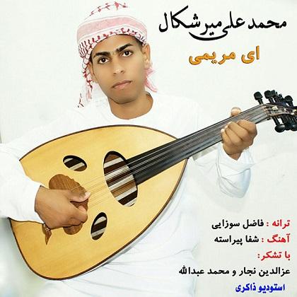 دانلود آهنگ محمد علی میرشکال بنام ای مریمی