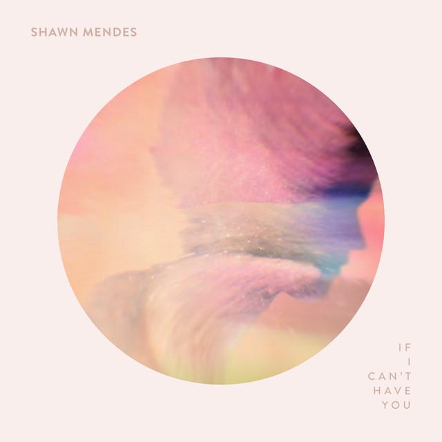 دانلود آهنگ If I Can't Have You از شان مندز Shawn Mendes + متن