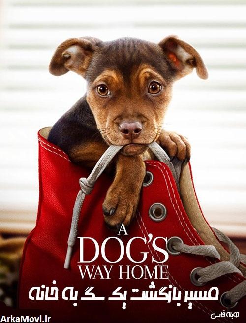 دانلود دوبله فارسی فیلم مسیر بازگشت یک سگ به خانه ۲۰۱۹