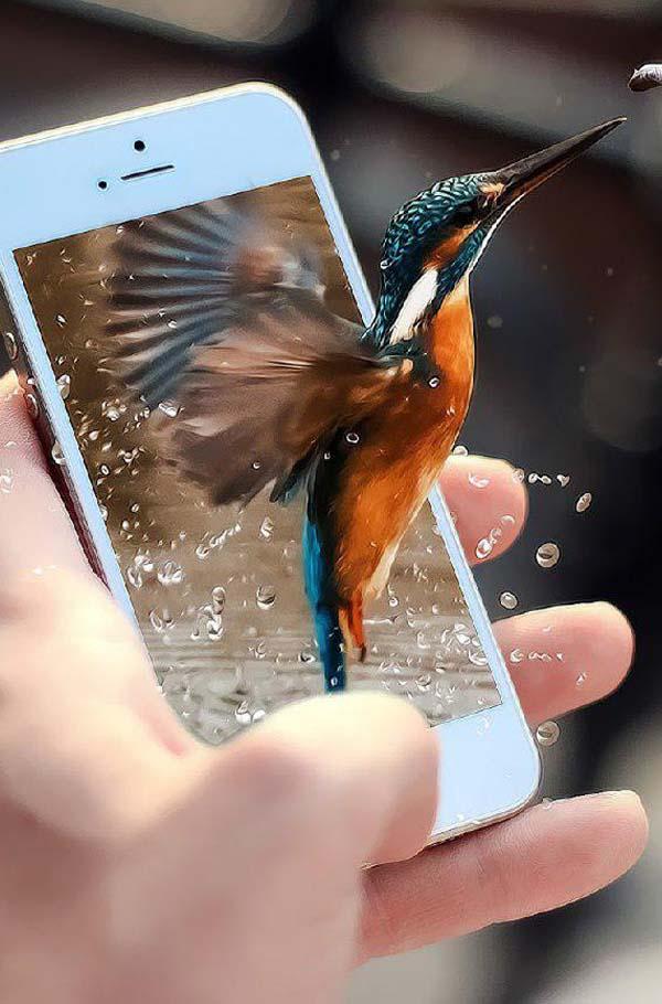 آموزش ساخت تصویر سه بعدی پرنده