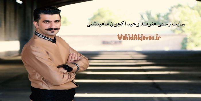 بیوگرافی وحید اکجوان