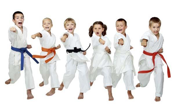 تحقیق در مورد ورزش کاراته