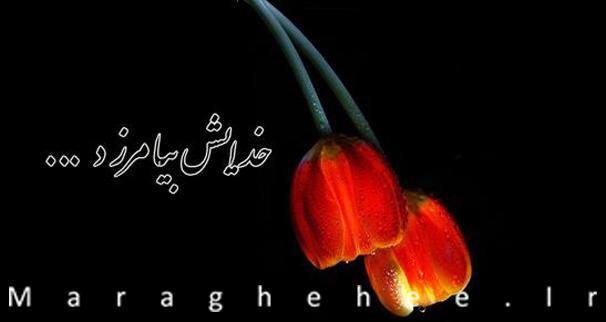 اولین مراسم گرامیداشت مرحوم جمشید گرامی