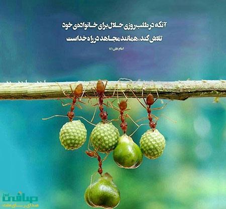 پاداش کسی که به دنبال روزی حلال باشد چیست؟