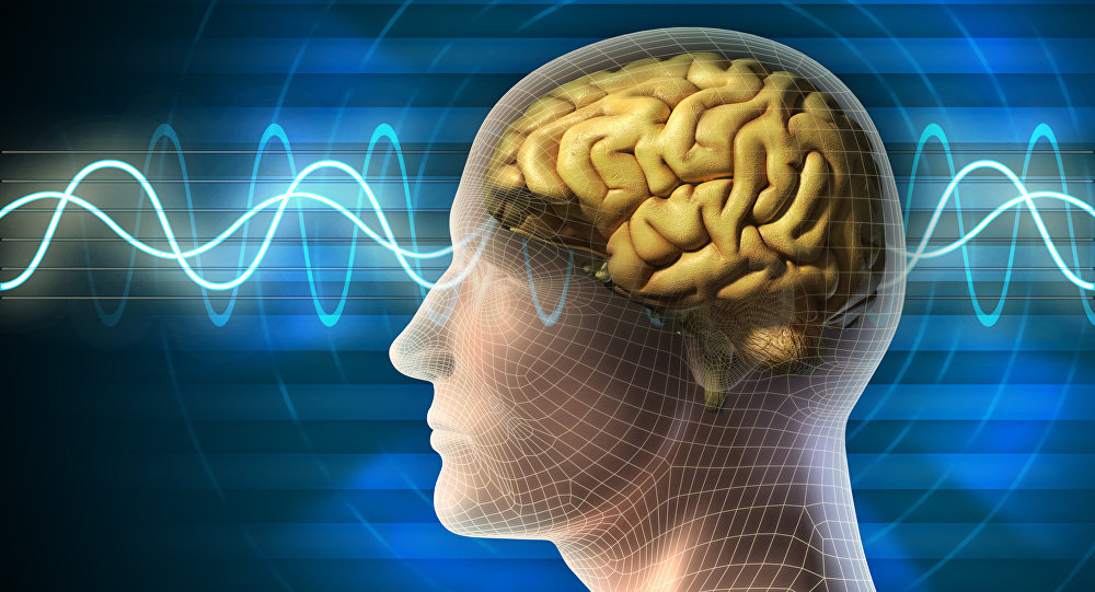 آموزش تقویت حافظه و تندخوانی رایگان
