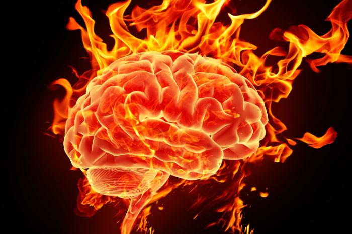 ۱۰ مکمل برای افزایش قدرت مغز را بشناسید