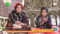 شویل دنا -اجرای مشترک با مرکز بوشهر-گزارش
