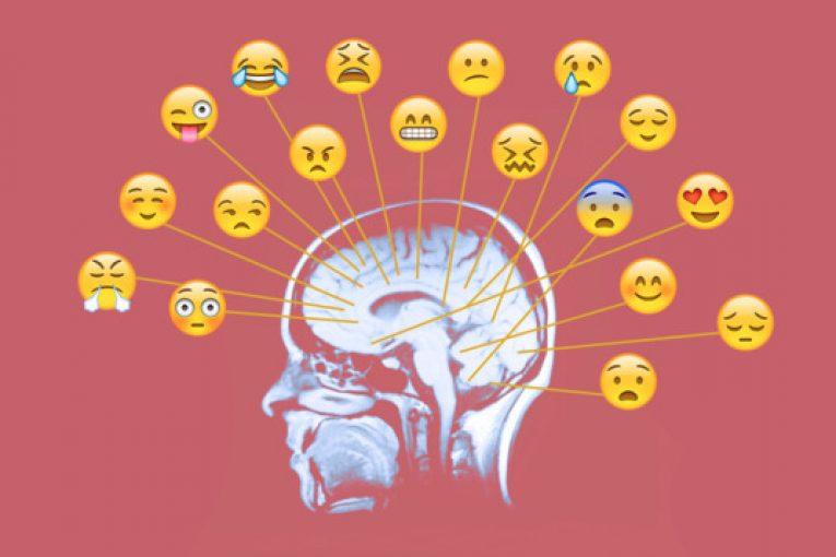مسیر احساسات