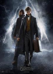 دانلود فیلم Fantastic Beasts: The Crimes of Grindelwald 2018