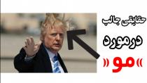 حقایقی جالب درمورد موی انسان