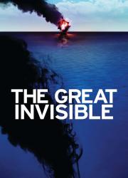 دانلود فیلم The Great Invisible 2014