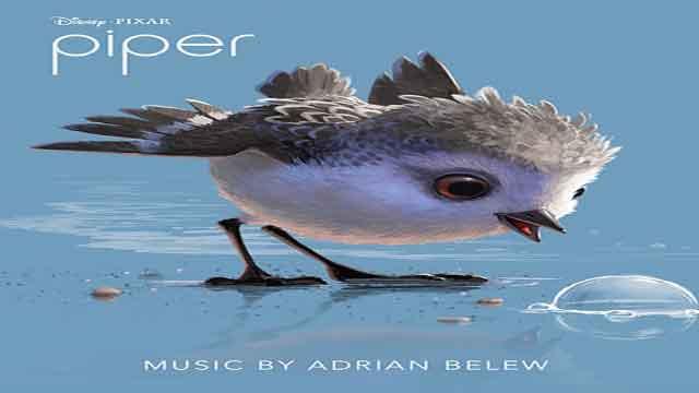 انیمیشن کوتاه جوجه کبوتر- Disney Pixar – Piper 2016