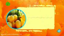 بهون مهر -خواص میوه ها وسبزیجات - آلوزرد