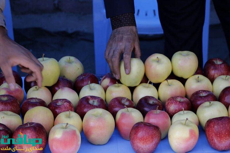 جشنواره سراسری سیب مراغه ۱۹ مهر برگزار میشود