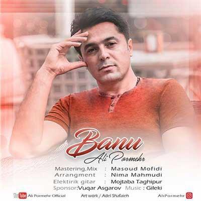 دانلود آهنگ جدید و بسیار زیبای علی پرمهر به نام بانو