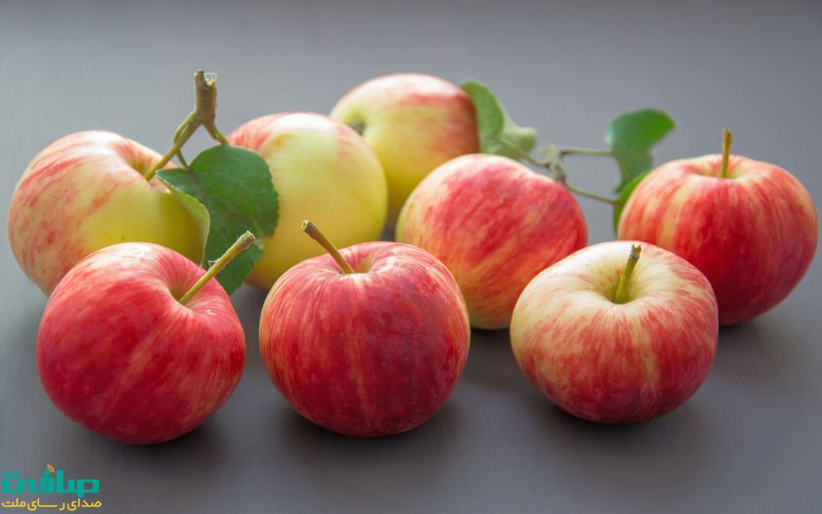 جشنواره سیب در مراغه
