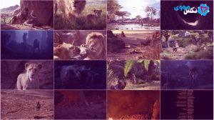 دانلود مستقیم انیمیشن The Lion King 2019 با دوبله فارسی