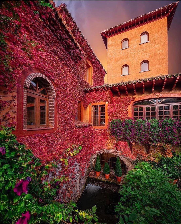 گل در نمای ساختمان