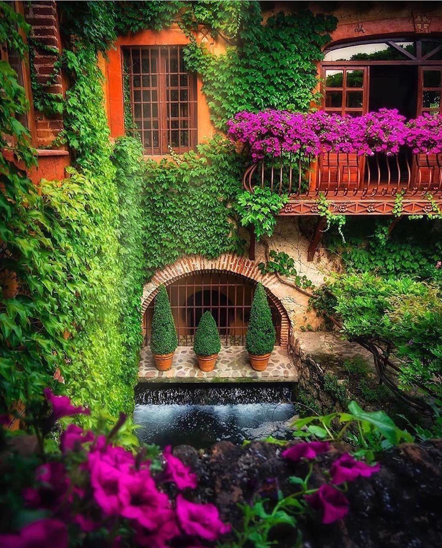 گل و گیاه در نمای ساختمان