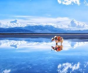 جاذبه گردشگری دریاچه نمک چاکا ؛ آینه آسمان در چین