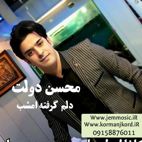 دانلود آهنگ جدید محسن دولت به نام دلم گرفته امشب