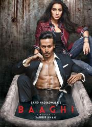 دانلود فیلم هندی باغی ۱ با دوبله فارسی Baaghi 2016 BluRay