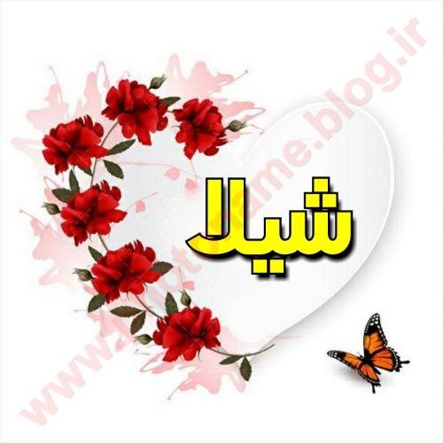 اسم شیلا طرح گل