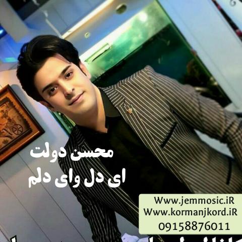 دانلود آهنگ جدید محسن دولت به نام ای دلم وای دلم