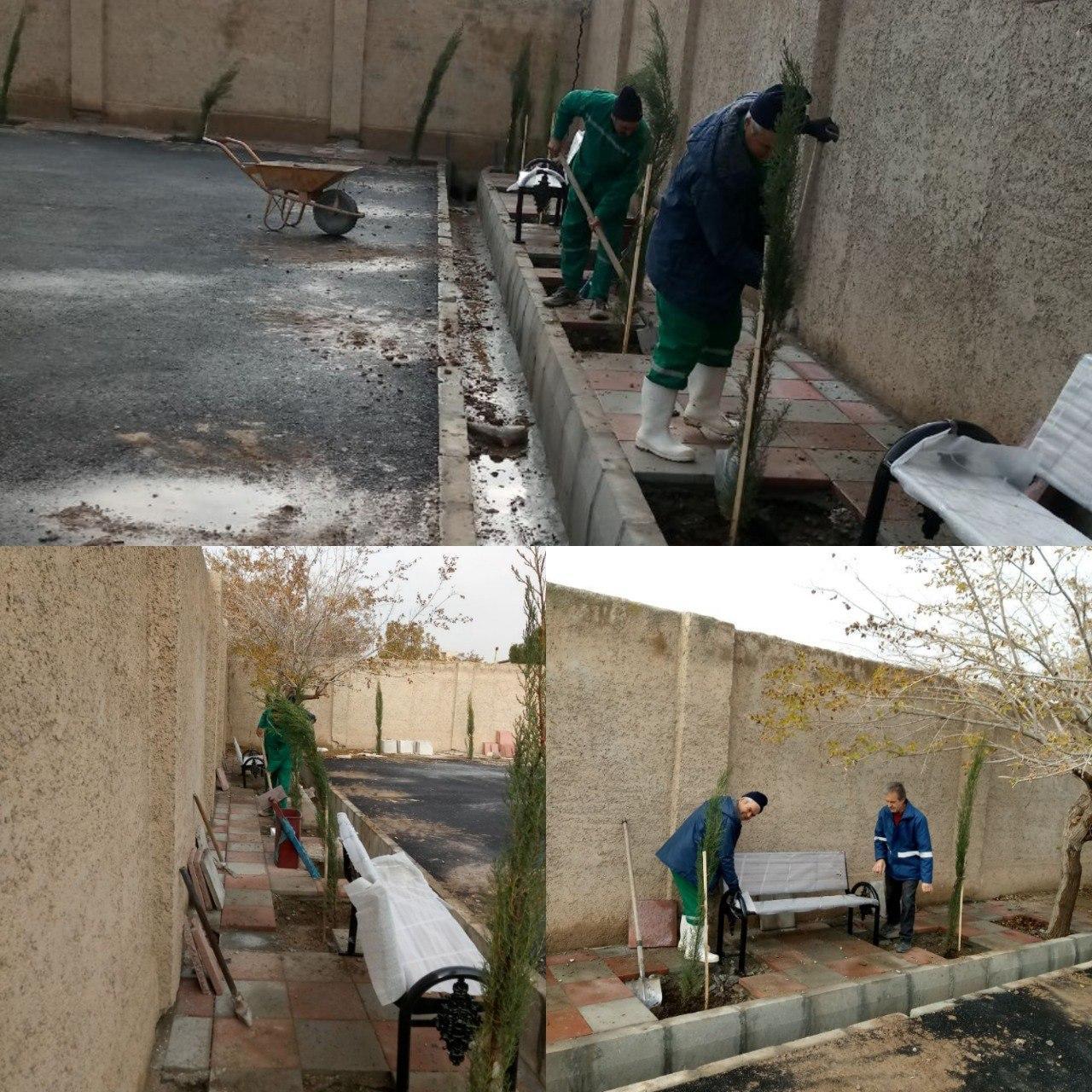 کاشت نهال در زمین والیبال محله جوقین