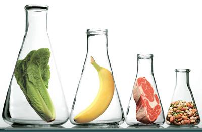مواد مغذی، مواد مغذی محافظ بدن