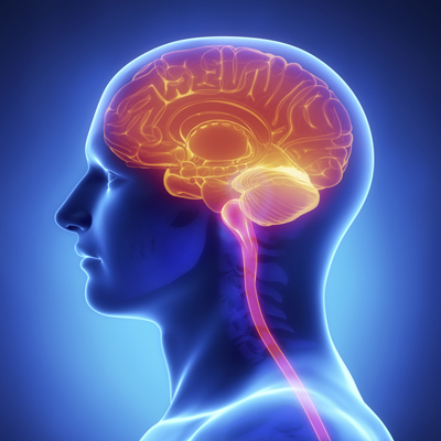 علت بروز دردهای سیاتیکی،آرتروز