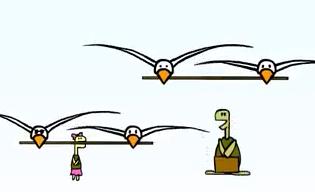 کلیپ خنده دار «لاکپشت و مرغابی ها»