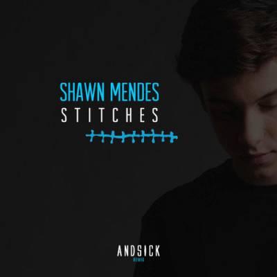 دانلود آهنگ Shawn Mendes  به نام Stitches