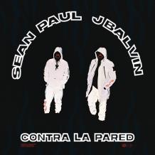 دانلود آهنگ  Sean paul & J balvin به نام  Contra La Pared