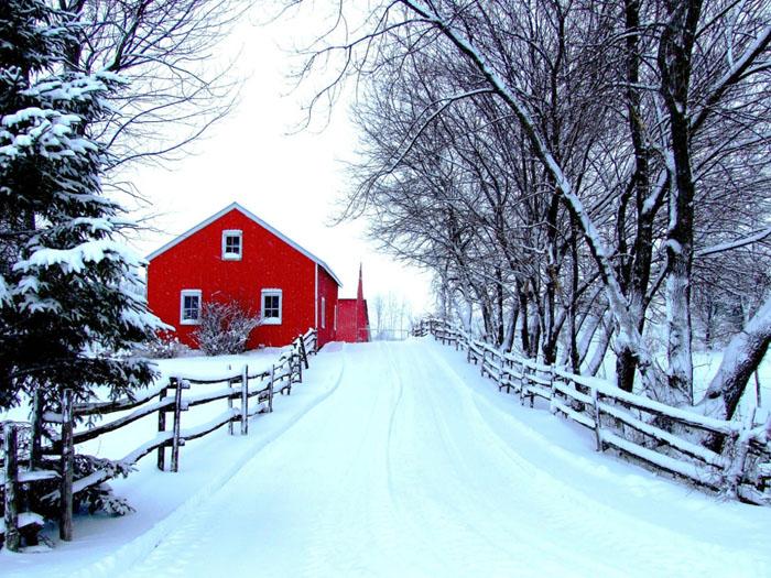 انشا زمستان؛ 5 انشای زیبا در مورد فصل زمستان برای دانش آموزان