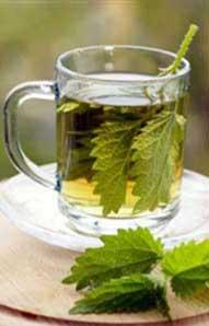 کمخونی,درمان کمخونی,داروی گیاهی درمان کمخونی