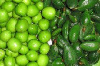 خواص گوجه سبز, فواید گوجه سبز