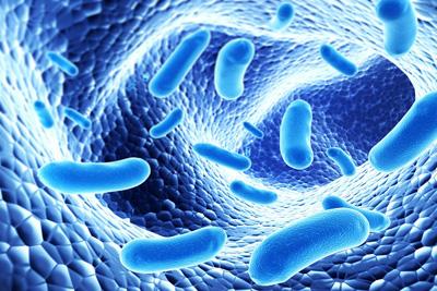 تقویت سیستم ایمنی بدن،راههای تقویت سیستم ایمنی بدن