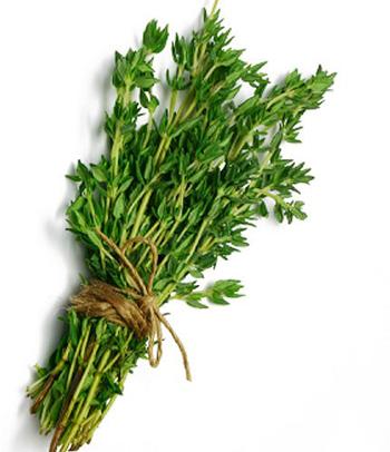 خواص درمانی آویشن،خاصیت گیاه آویشن