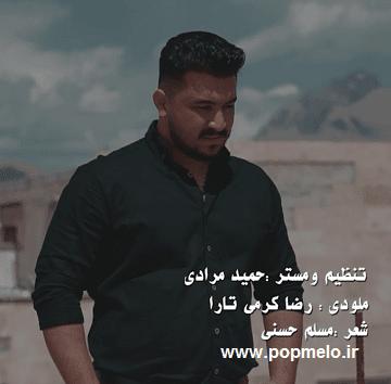 دانلود موزیک ویدیو ویرانه رضا کرمی تارا