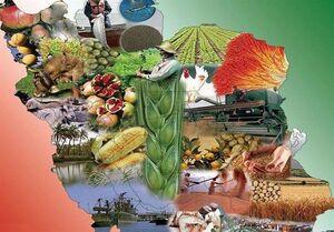 ایران، میتواند غذای ۵۰۰ میلیون نفر را تأمین کند +جدول