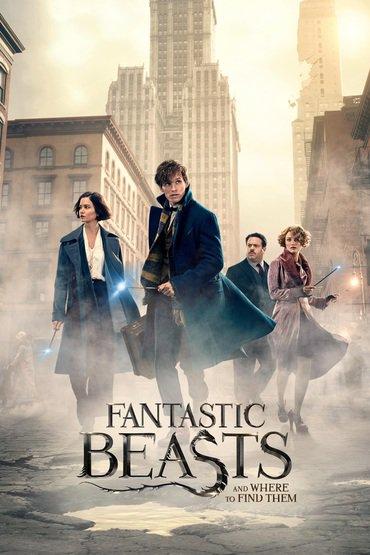 دانلود فیلم Fantastic Beasts and Where to Find Them 2016 دوبله فارسی - جانواران شگفت انگیز 1